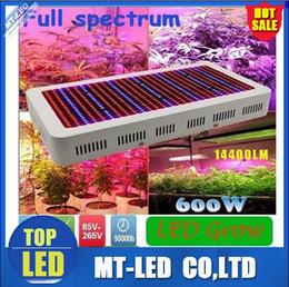 Wholesale Plug Grow Lights - High QI led Plant growth lamp 600W 14400lm Full Spectrum LED Grow Light Red Blue White UV IR AC85~265V With uk eu au us plug