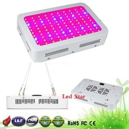 Wholesale Uv Ir - Best 100X3W Hydro Grow LED Full Spectrum Top value 9-band 300w Hydroponic LED Grow lights with 100% Real 630nm UV IR
