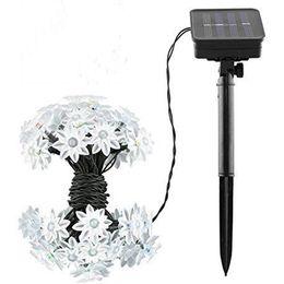 Wholesale led lotus lights - Make your life wonderful Rose Lotus Peach blossom LED strip christmas light holiday decoration LED fairy garden lights