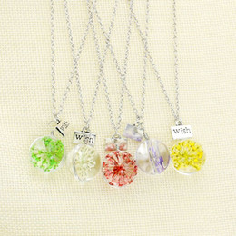Wholesale Long Glass Flowers - Hot Fashion Crystal Glass Ball Real Lavender Flower Wish Necklace Long Strip Leather Chain Pendant Necklaces Women 2015 Jewelry
