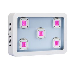 Wholesale Full Spectrum Greenhouse Lights - 1500W COB LED Grow Light Module Design Full Spectrum for Greenhouse and Indoor Plant Flowering Growing(5pcs 200w )