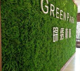 Erba artificiale artificiale di decorazione della parete artificiale gigante di Eucaly tappeto di erba artificiale di plastica di bosso 60cm * 40cm trasporto libero da