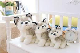 Белая хаски-плюшевая игрушка онлайн-Сибирский Хаски Плюшевые Животные Собаки Белый Плюшевые Куклы Детские Дети Мультфильм Животных Игрушки Pet День Рождения Рождественские Подарки Высокое Качество 3 Размер