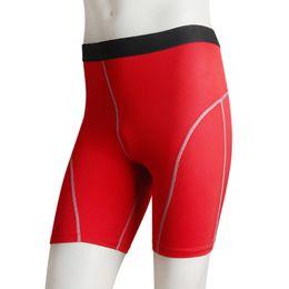 Wholesale Tranning Pants - Wholesale-Men Fast Dry Sport Tranning Shorts Compression Base Layer Short Pants Trousers