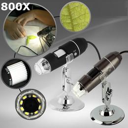Canada 800x Portable USB 2MP 2 M Microscope Numérique de Poche Magnification 8-LED Mini Microscope Caméra Loupe avec Stand Livraison Gratuite Dropship Offre