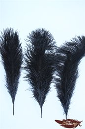 Wholesale Sailor Mascot - New Products 2016 Craft Ostrich Feather 20-25cm For Brithday Party Wedding Decorations