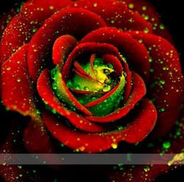 Grandi piante da giardino online-semi di sementi 100 Big Red Green Rose Seeds, colore raro, aroma ricco, Giardino di casa DIY Rose Plant pazzo
