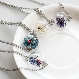 Wholesale Glasses Sunshine - Wholesale-Sunshine Glass bottle dried flower necklace Make A Wish Glass Orb Silver Chain Choker Necklace for women