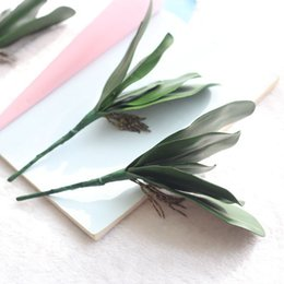 Wholesale Artificial Floor Plants - Artificial Green Butterfly Orchid Leaf Home Wedding Party Decoration High Quality Material Green Plant Hot Sale 2 5fh J