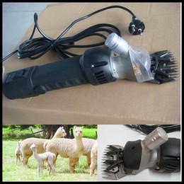 Wholesale Pet Goats - goat pet wool shears electric scissors|sheep hair clipper