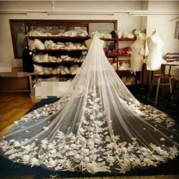 Wholesale Korean Wedding Veils - Real Image.Unique Design.Embroidered Luxury Wedding Veils 3D Flower Korean Beautiful 3M*3M Long Wedding Bridal Veils With Pearls A2