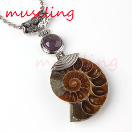 Wholesale Stone Shell Necklace - Natural Gem Stone Half Ammonite Fossil Pendants Pendulum Rose Quartz Amethyst Pearl etc Different Reiki Charms Amulet Retro Jewelry