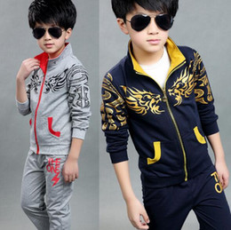 Wholesale Kid S Down Coats - Hot sales 2016 new Children Clothing Sets Kids Boys Girls Clothing Zipper in September Costumes Child Teen Sport Coat + Pants sets Dragons