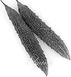 2019 semi di zucca Semi di balsamo nero di pera 5 semi di semi di zucca amara amara rara varietà di semi di ortaggi sconti semi di zucca