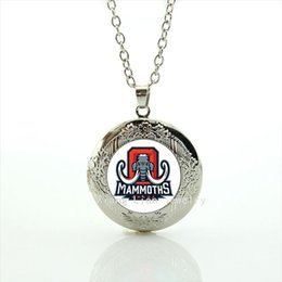 Wholesale Cute Accessories For Women - Cute animal picture locket necklace Alabama team Newest mix 32 sport team jewelry gift for men and women accessory NF075