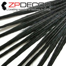 Wholesale Wholesale Fly Tying Feathers - ZPDECOR 50-55cm(20-22 inches) Handwork Top Quality Dyed Black Ringneck Pheasant Tail Feathers for Fly Tying