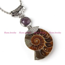 Wholesale Fossil Silver Necklace - 2016 Charm Rose Quartz Amethyst Various Natural Stone Bead Different Half Ammonite Fossil Reiki Pendant Charms Amulet Retro Jewelry 10pcs