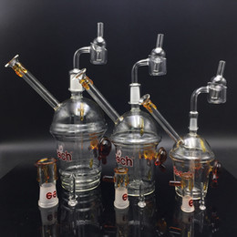 2019 taza de aceite bong Nueva Tortuga Cheech Glass Honey Cup 10mm 14mm 18mm con Real Quartz Thermal Banger Dab Oil Rig Glass Bong Starbuck Cup Tubo de agua