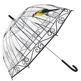 Wholesale wholesale ladies umbrellas - Lady Birdcage Transparent Umbrella Rain Proof Creative Long Handle Umbrellas For Woman Outdoor Gift Many Styles 9 1jh C R