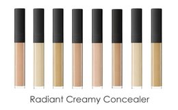 Wholesale N Skin - Brand N Radiant Creamy Concealer 6 Colors Facial Weightless Foundation 100% Perfect All Day Concealers Free Shipping