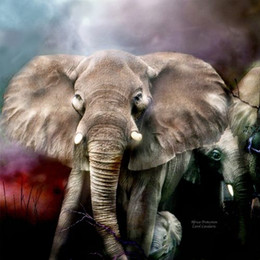 Wholesale Elephant Oil Canvas Painting - Bad Modern Animal Elephant Art Painting Beautiful Giclee Print On Canvas Fantasy Home Decor Wall Art oil Painting Fancy863