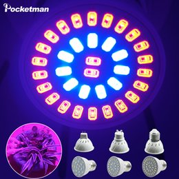 Wholesale Cree Growing Light - Wholesale- LED Plants Grow Light GU10 E27 MR16 SMD5733 220V 9W 12W 15W Flower Seedling Hydroponic System Greenhouse Tent lamp