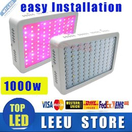 Wholesale Double Downlights - Factory outlet Recommeded Double Chips 1000W LED Grow Light Panel downlights with 9-band Full Spectrum for Hydroponic Systems have STOCK