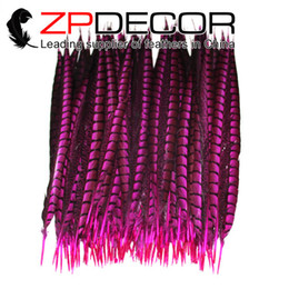 Wholesale Dance Tails - ZPDECOR 30-35cm(12-14 inches) Dyed Hot Pink Long Lady Amherst Pheasant Tail Feathers for Dance Show