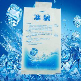 sac à lunch Promotion 10 paquets d'isolation personnalisable réutilisable sec froid gelée pack gel sac isotherme boîte à lunch pot de nourriture