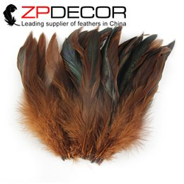 Wholesale Feather Hair Dye - Retail and Wholesale from ZPDECOR 10-15cm (4-6 inch) Dyed Brown Rooster Coque Feather for Hair Extensions Decoration