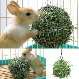 Wholesale Rabbit Dispenser - Wholesale-2015 Hot Sale Iron ball design Sphere Treat Ball Guinea Pig Hamster Rat Rabbit Feed Dispenser Ball Toy Pet Products