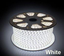 Luzes decoração ao ar livre vermelho on-line-50 m 220 V CONDUZIU a Luz de Tira Da Lâmpada 5050 SMD Chip de Corda Ao Ar Livre À Prova D 'Água IP67 Ruban Azul Verde Vermelho Branco Quente branco para a Decoração Do Armário ROSH