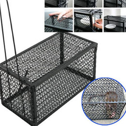 Wholesale Rat Cage Traps - Funny Rodent Animal Mouse Humane Live Trap Hamster Cage Mice Rat Control Catch Bait Pest Control Tools
