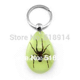 Wholesale Wholesale Insect Amber - Real Bug Spider in Resin Amber Keychains,Cool Key chains,Insect Specimen Keyring,Spider Man Gift Fashion Jewelry,Fee Shippingr