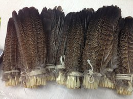 Wholesale Cm Festival - Wholesale 10-100 PCS precious USA wild turkey tail feathers 6-8 inches  15-20 cm Festival and party supplies > > celebration party supplies