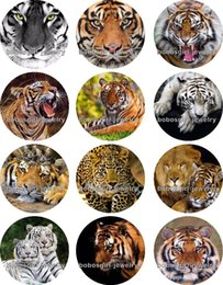 Wholesale Tiger Charms Wholesale - Free shipping Tiger Leopard glass Snap button Jewelry Charm Popper for Snap Jewelry good quality 12pcs   lot Gl309 Jewelry making DIY