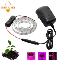 Wholesale Grow Light Set - LED Grow Lights DC12V Growing LED Strip Plant Growth Light Set with Adapter and Switch