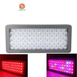 Wholesale Lamp Series Led - DHL Advanced Platinum Series P300 300w 12-band LED Grow Light AC 85-285V Double leds - DUAL VEG FLOWER FULL SPECTRUM Led lamp lighting