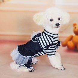 Wholesale Dog Jeans Apparel - Dog Supplies Autumn Pet clothes cotton Jeans pants skirt Dog Apparel free shipping
