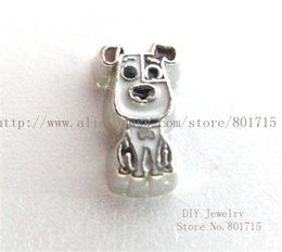 Wholesale Dog Floating - Hot sale New arrival animal lovely Dog FC1498 floating locket charm 10p With Lowest Price for living memory locket as best gift