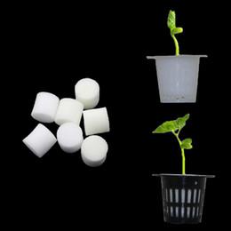Verdure idroponiche senza suolo Vasi da vivaio Vivaio Spugna Seme floreale Coltivazione Soilless Sistema di coltivazione Vassoi da