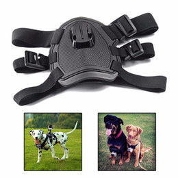 Wholesale Harness Pro - Action camera GoPro Accessories Dog Fetch Harness Chest Strap Shoulder Belt Mount For Go Pro Hero 4 3 2 SJ4000 Xiaomi yi WIFI sport Camera