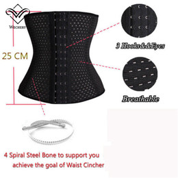 Wholesale Sexy Lace Tights - Waist Trainer Steel Boned Sexy Waist Training Cincher Body Thin Shapers Corset Girdle Training Tight Lacing Cincher