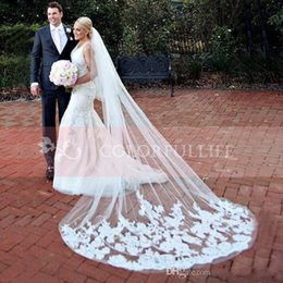 Wholesale Long Sheer White Veils - Hot Sale Lace Sheer Bridal Veils White Ivory Appliqued Tulle 3 Meters Long In Stock Bridal Head Veils With Comb Wedding Accessories CPA219