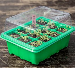 high quality 5 set seed trays plant germination kit grow starting durable plastic with humidity dome and base 60 cells all koram plant tags