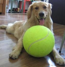 Детские пластиковые шарики онлайн-9.5 дюймов собака теннисный мяч гигантский теннисный мяч игрушки любимчика собаки игрушки Chew подпись Мега Джамбо детский мяч игрушка для домашние животные собаки