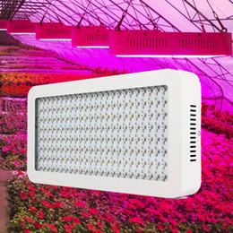 Wholesale Balcony Plant Box - 1200W Full Spectrum LED Grow Lights 200PCS 6W Chips UV IR Light for Flowering Plants Hydroponic System Indoor Balcony Grow Box AC85-265V