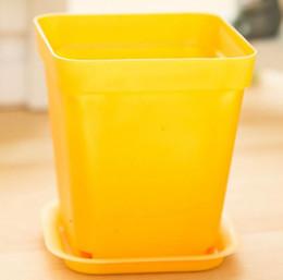vaso da scrivania Sconti Mini vaso di fiori colorati in un vaso di plastica piante in vaso di plastica con il vassoio sulla scrivania