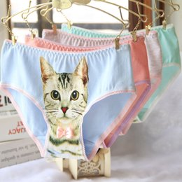 Wholesale Wholesale Animal Print Lingerie - Factory wholesale! Women Lady Sexy Lingerie Seamless Briefs Pussycat Panties Anti Emptied 3D Cat Printing girl Underwear DHL Free shipping