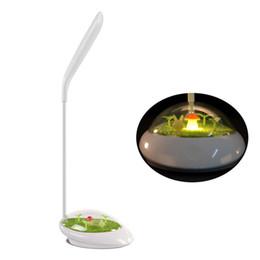 Erba dolce online-Lampada da tavolo a LED Verde erba Micro Scenery Ricarica USB Touch Dimming Luce notturna Soft Multi angolo di regolazione Leggere la lampada da tavolo